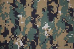 Лоск 115, ТиСи сорочка 70/30, КМФ №10(1), 115 г/м2.