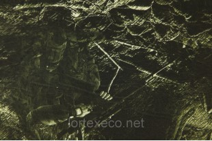 Ткань дублированная Дюспо-Флис, №201504, 230г/м2.